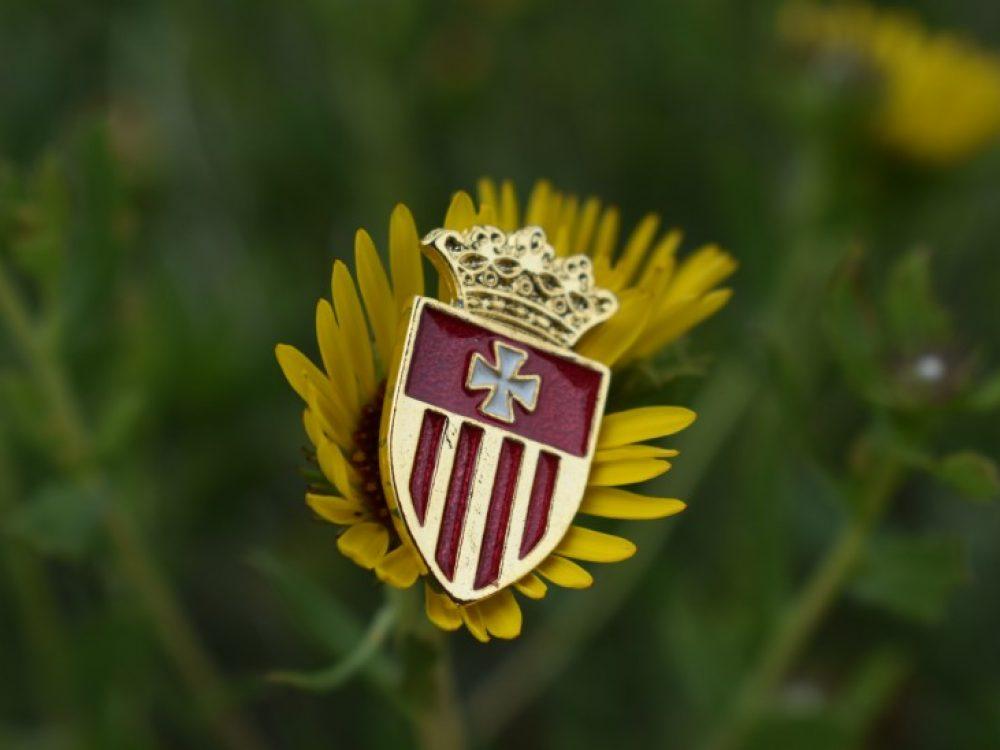 Escudo Mercedario